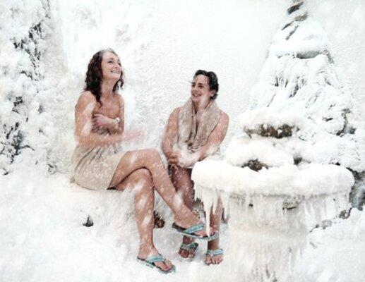 Laplandse sneeuwcabine